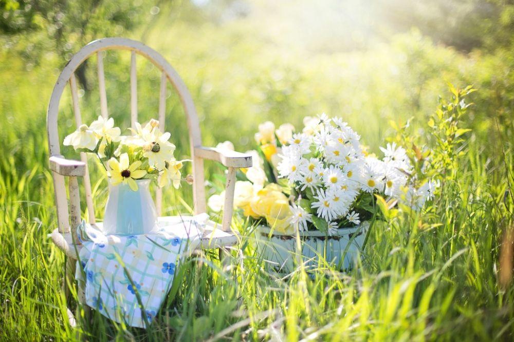 Je tuin onderhouden jaarplanning