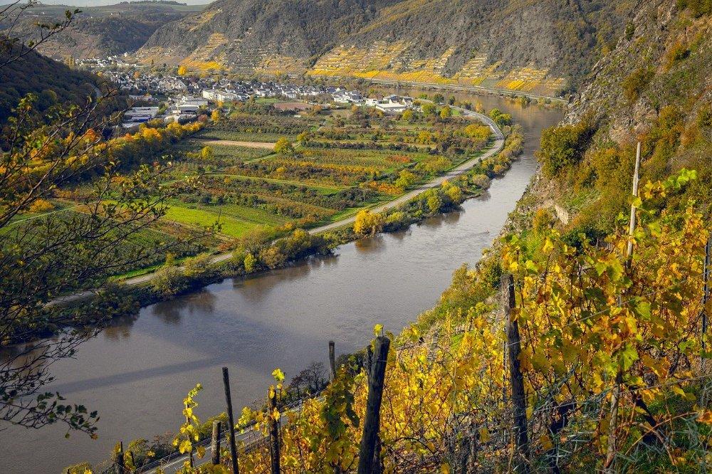 Verrassende wijnkeuze ga voor Rieslin